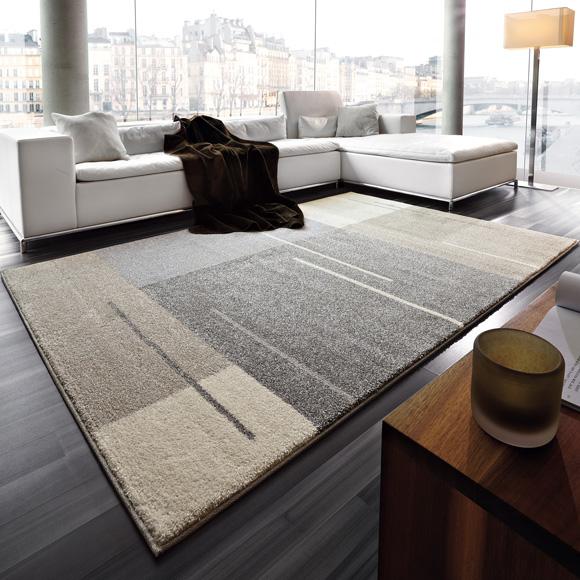 teppich 160 230 catlitterplus. Black Bedroom Furniture Sets. Home Design Ideas